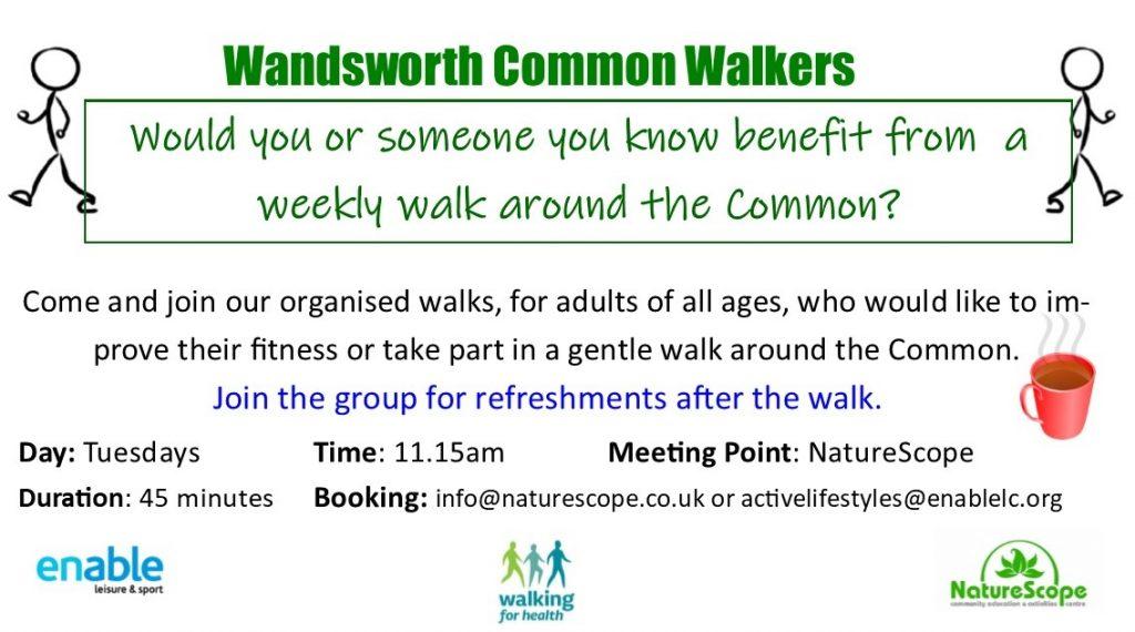 Wandsworth Common Walkers