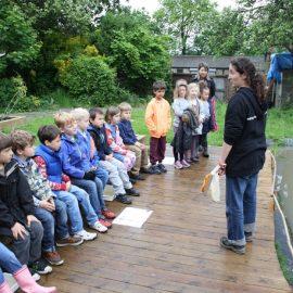 Groundwork Schools Programme
